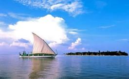 banyan-sailing-3