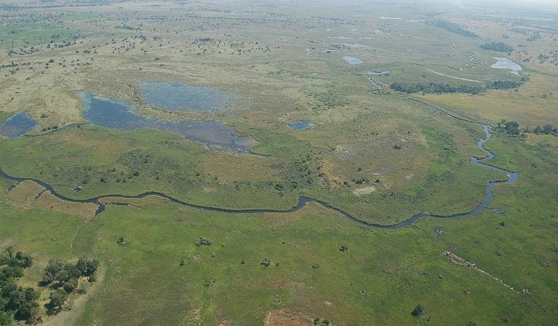 Delta de Okavango, Botswana - Joachim Huber | namasteviajes.com