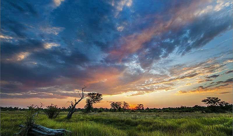 Moremi, Botswana - Hein waschefort | namasteviajes.com