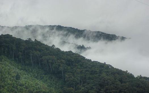 San Gerardo de Dota, Costa Rica - MongeNajera | namasteviajes.com
