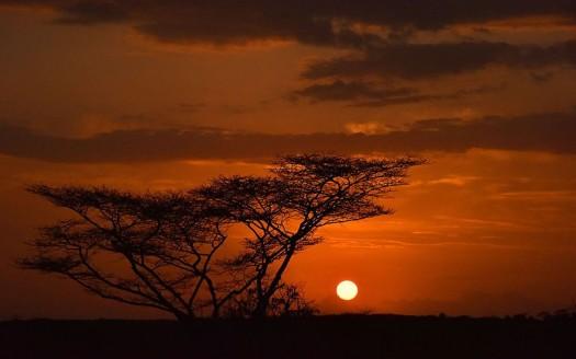 Turmi, Etiopía - Rod Waddington, Creative Commons Attribution/Share Alike 2.0 Generic | namasteviajes.com