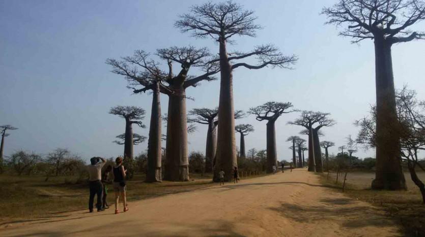 Madagascar - Henar Martín | namasteviajes.com