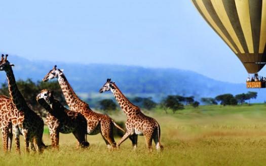 Sueño de África | namasteviajes.com