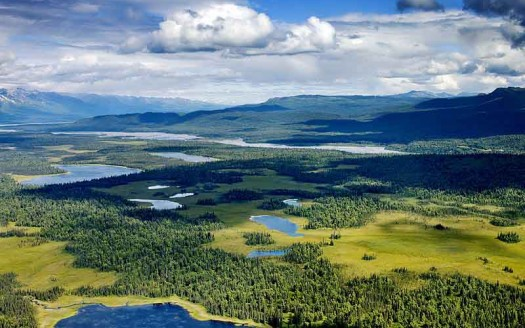 Parque Nacional Denali, Alaska (Estados Unidos) - Carol M. Highsmith | namasteviajes.com