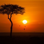 Reserva Nacional Maasai Mara, Kenia - Svein Magne Tunli tunliweb.no | namasteviajes.com