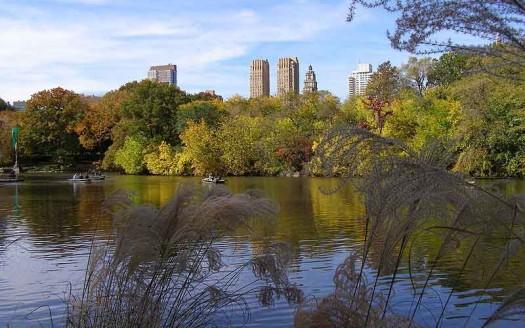 Central Park, Nueva York (Estados Unidos) - -jkb- Creative Commons Attribution 3.0 Unported | namasteviajes.com