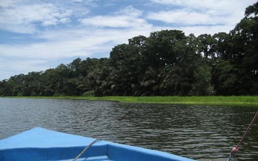 Canales de Tortuguero, Costa Rica - Robkeijsers de Wikipedia en neerlandés | namasteviajes.com