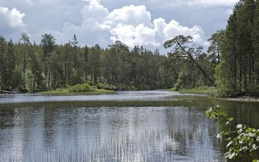 Jatkonjärvi, Finlandia - Risto Varhe | namasteviajes.com