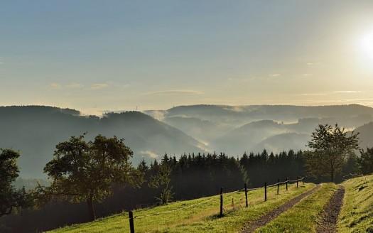 Selva negra, Alemania - Taxiarchos 228 | namasteviajes.com