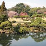 Shinjuku Gyoen, Tokyo (Japón) - Craig Wyzik Olympia, WA, USA, Creative Commons Attribution 2.0 Generic license | namasteviajes.com